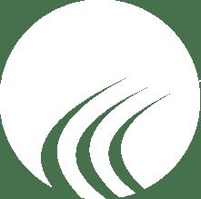 Consensus Health_tm2018 - SYMBOL ONLY - REVERSED